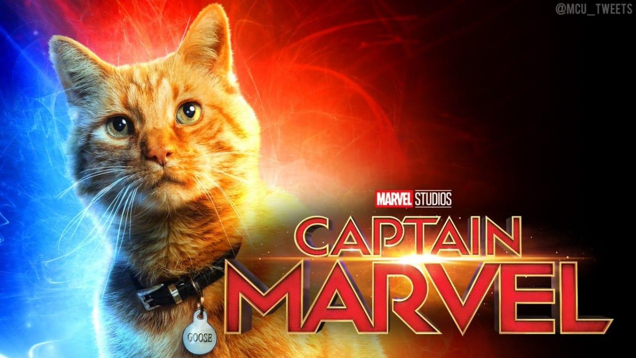 captain marvel goose