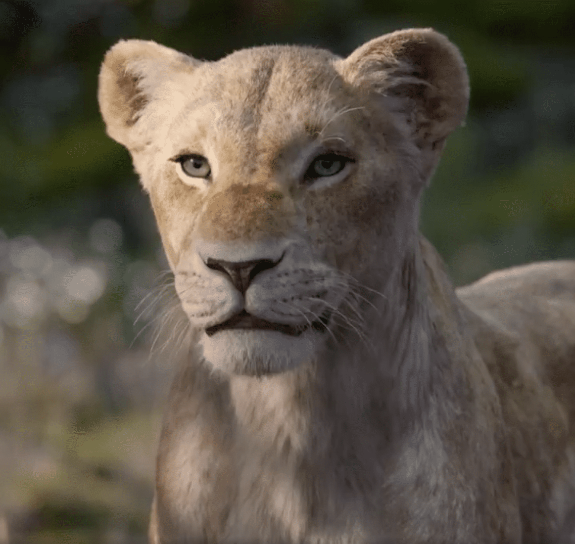 Beyoncé as Nala in the New Live-Action 'The Lion King'