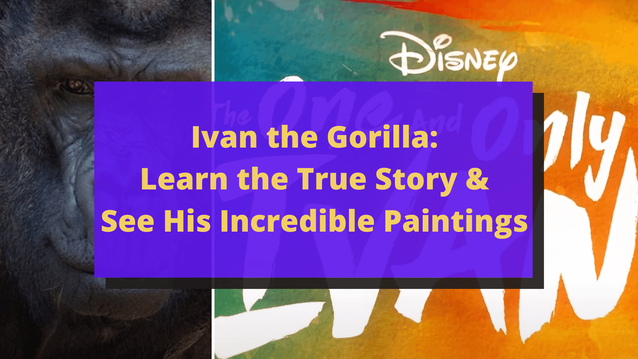 Ivan the Gorilla Is a True Story: See His Incredible Paintings