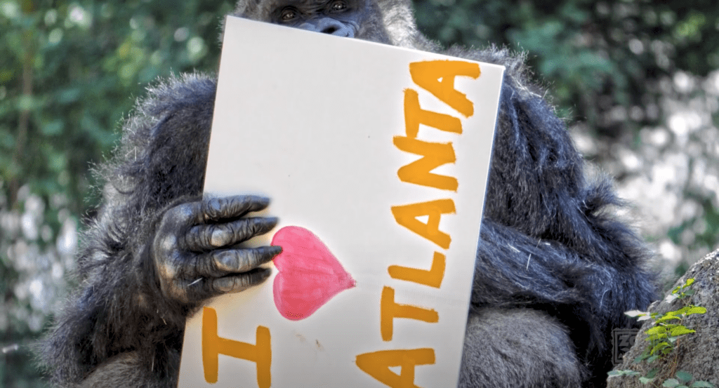 [Source: Zoo Atlanta via YouTube]
