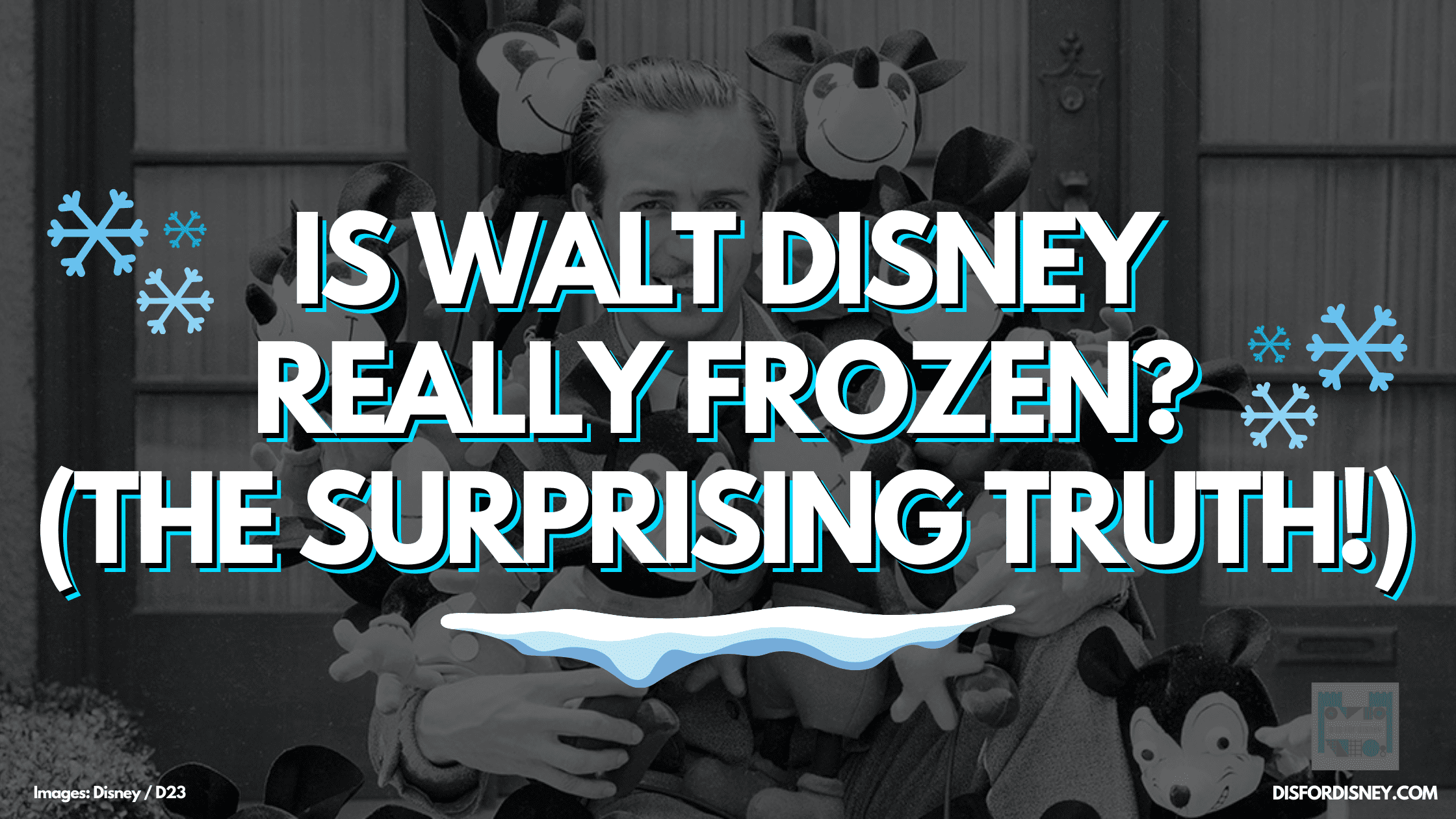 Is Walt Disney Frozen?