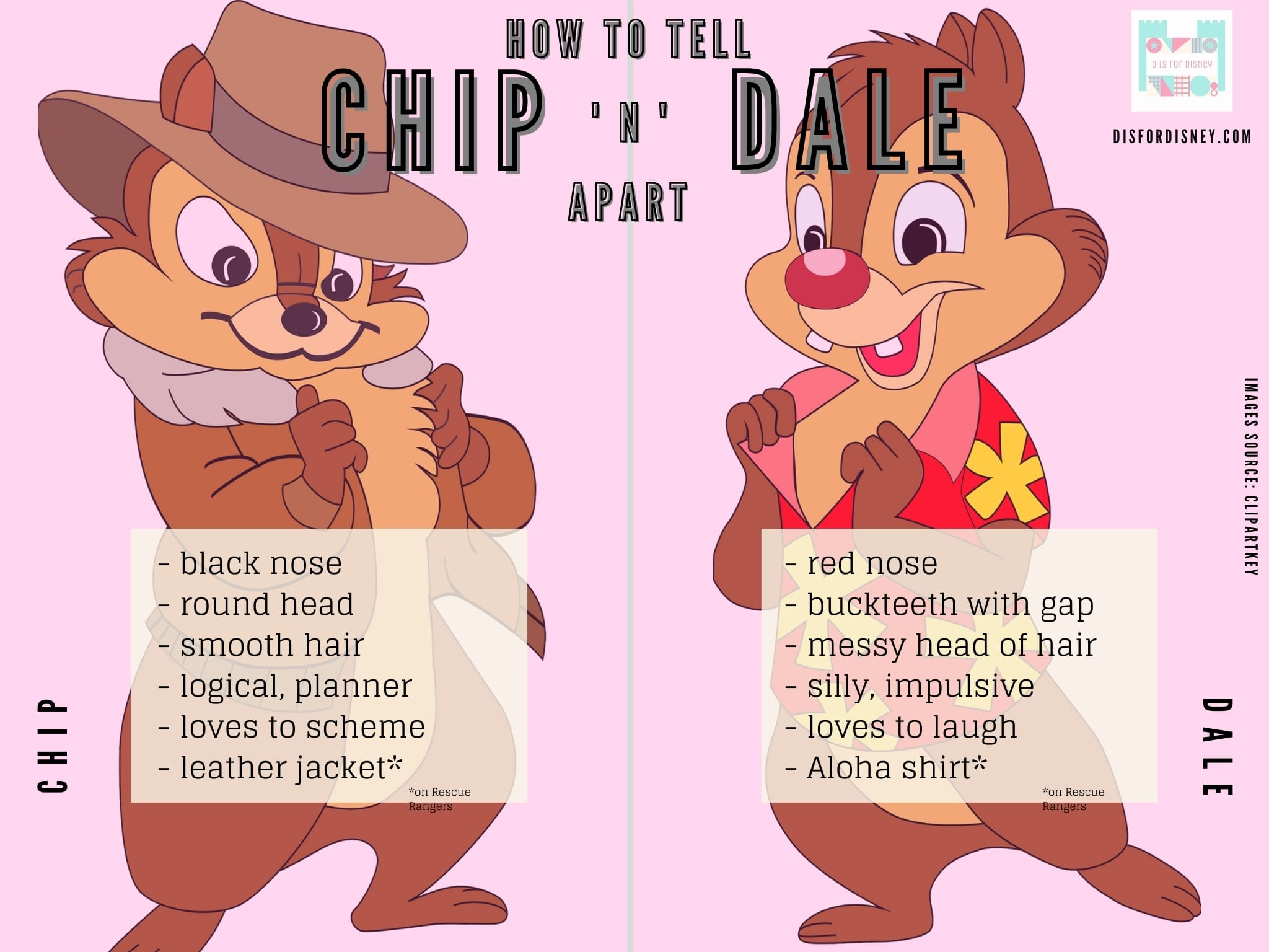 How to Tell Chip and Dale Apart